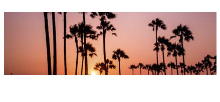 Blog Família Califórnia